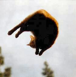 Rusty levitates